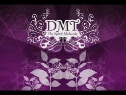 DMT Spirit Molecule Documentary